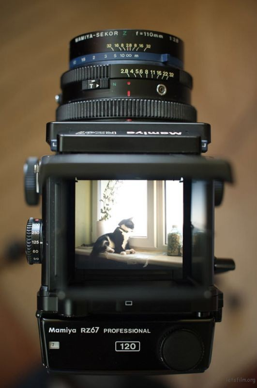 A-Very-Personal-Mamiya-RZ67-Pro-Review-638x960
