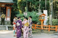 [17675] 春天去日本看了场樱花雨