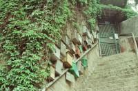 [17901] 胶片机里的电影