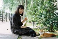 [17903] 吃了我的猫粮就是我的小猫咪了哦