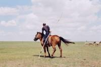 [17865] 套马的汉子