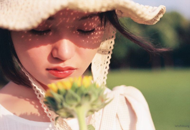 有两朵向日葵噢