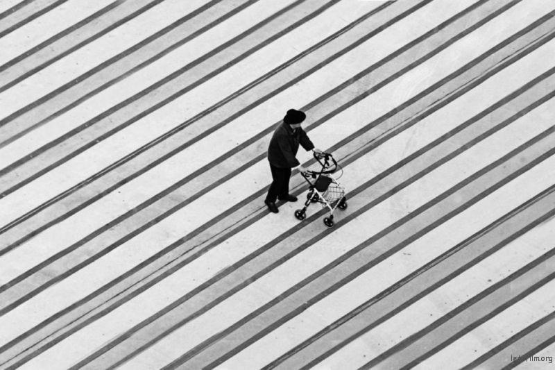 Photo by Christoph-Hetzmannseder