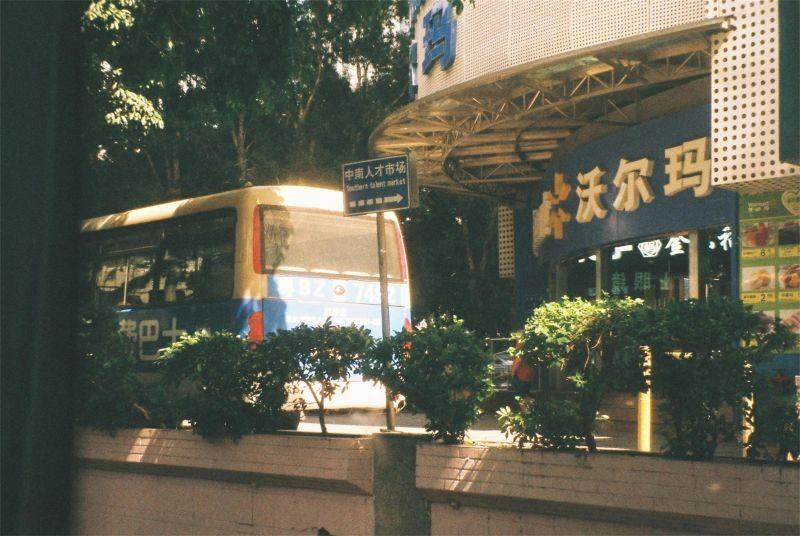 回到深圳的暑假