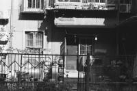 [19770] 绿色之门