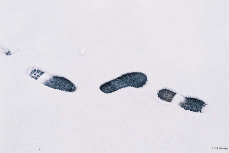 北京道落雪了8