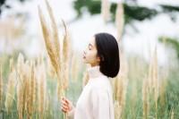 [19786] 秋·芦苇荡