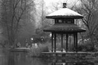 [19836] 冬日杭城