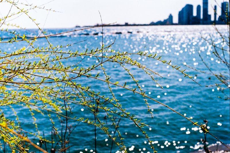 [19940] 在冬天里想着春天 | 胶片的味道