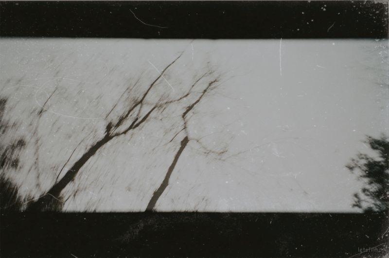 IMG_9746