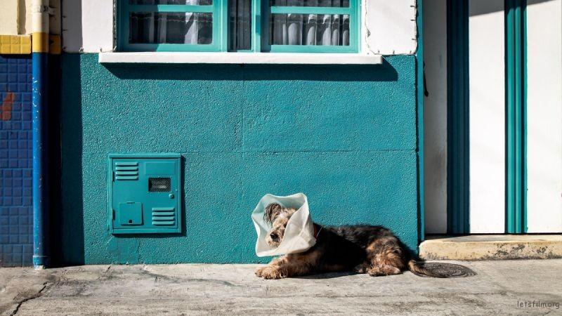 Photo by Ivan Rojas Urrea on Unsplash
