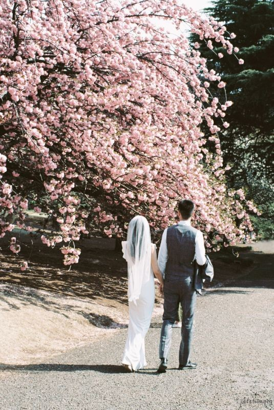 樱花树下 (8)