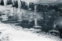 [20094] 雨至山阴