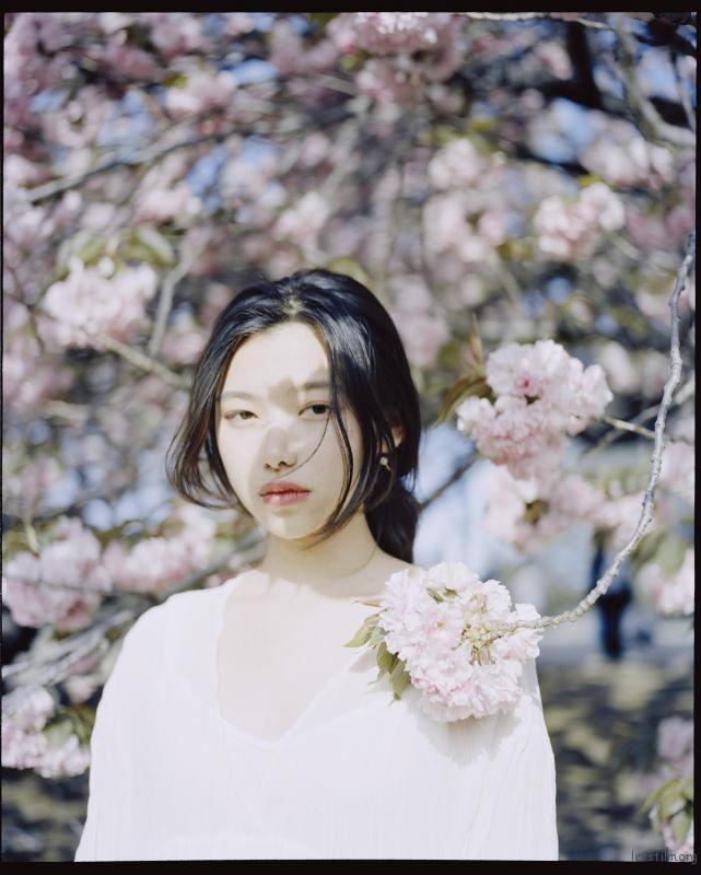 桜が咲くいた (2)