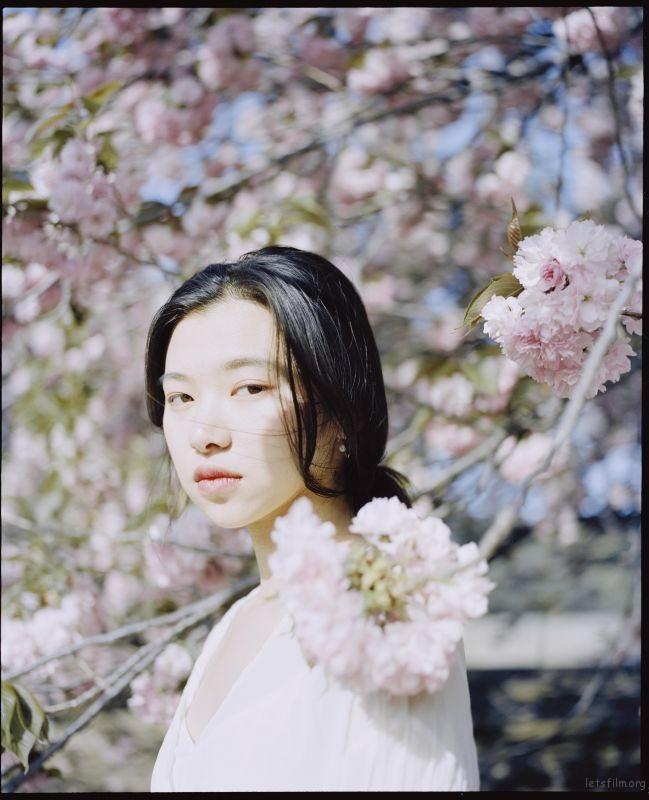 桜が咲くいた (4)