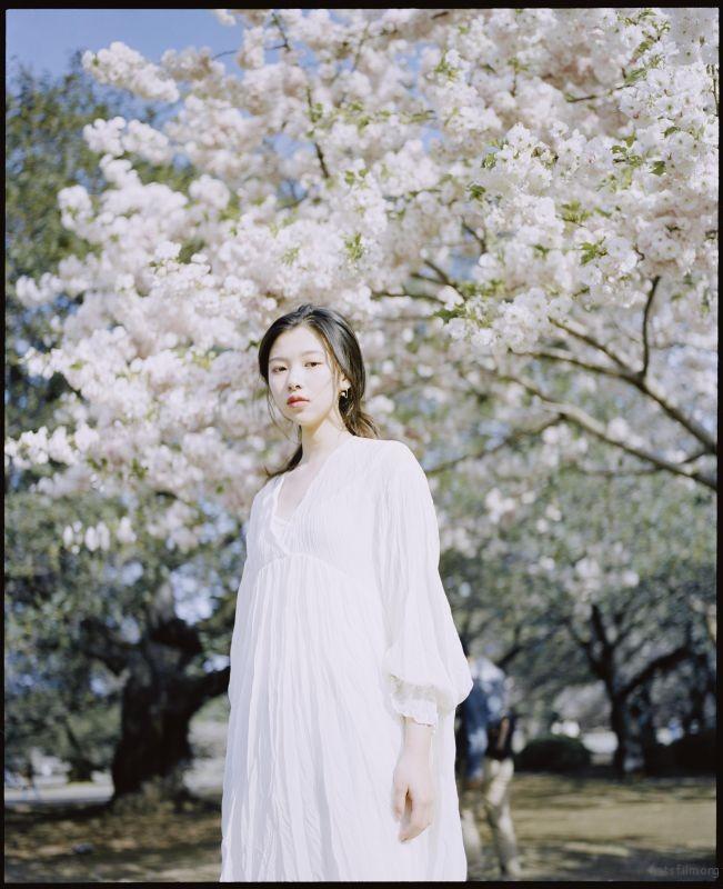 桜が咲くいた (5)