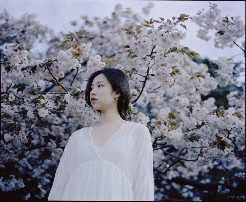 桜が咲くいた (6)