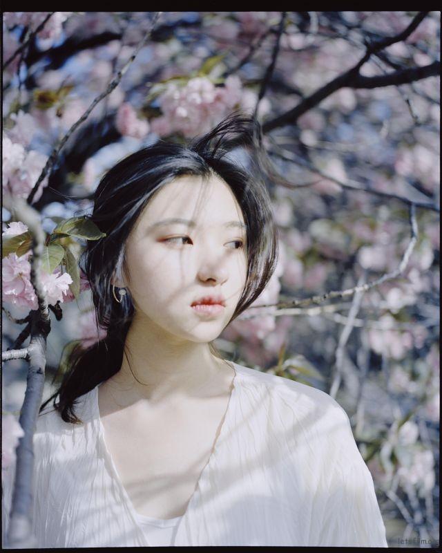 桜が咲くいた (8)