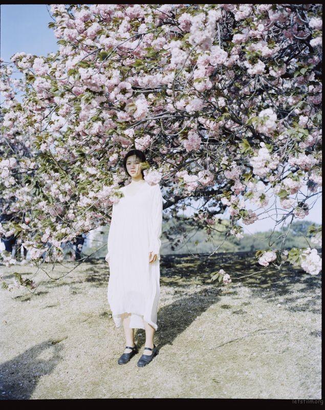 桜が咲くいた (9)