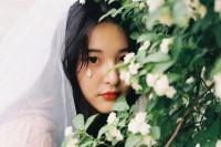 [20550] 四月蔷薇