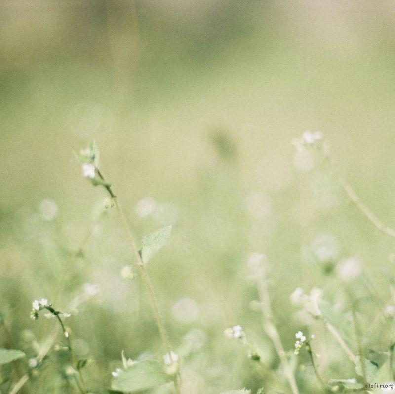 永恒的是所有须臾瞬间(4)