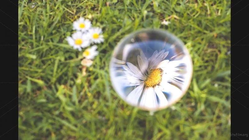 7 ideas for creative lens ball photography.mp4_20190527_132601.822
