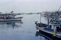 [20869] 一个小港口