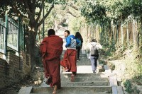 [21980] 尼泊尔不需要目的