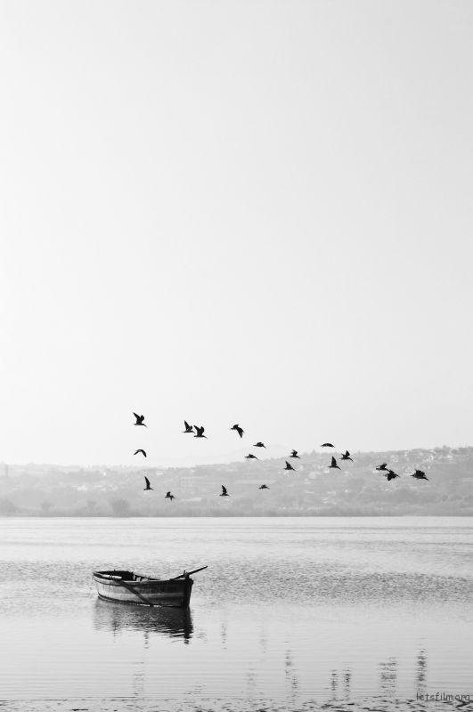 Photo by Esteban Amaro on Unsplash