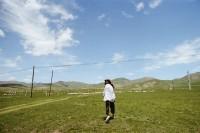 [22500] 风吹草低见牛羊