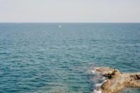 [22587] 西西里的夏日梦