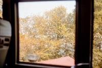[22653] 秋天该很好