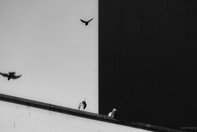 Photo by Philippe Leone on Unsplash