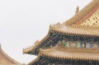 [22743] 雪落紫禁城