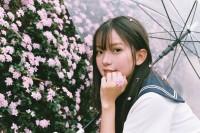 [22829] 春の桜